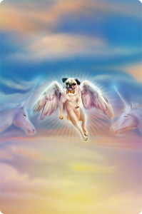 Willie the Pug Angel and His Entourage of Unicorns